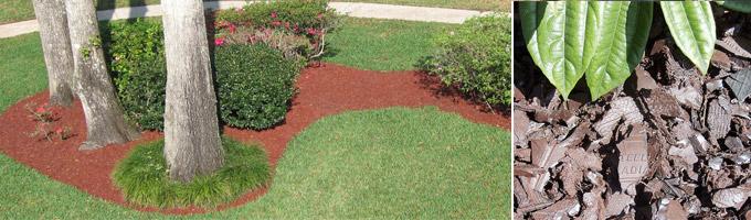 http://www.americantirerecycling.com/images/rubber_mulch_garden.jpg